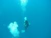 Underwater - Malediven
